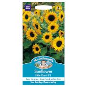 Mr. Fothergill's Sunflower Little Dorrit F1 Seeds
