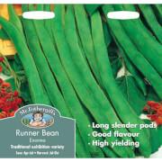 Mr. Fothergill's Runner Bean Stringless Enorma (Phaseolus Coccineus) Seeds