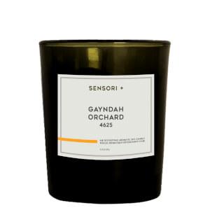 SENSORI+ Air Detoxifying Aromatic Soy Candle - Gayndah Orchard 60g