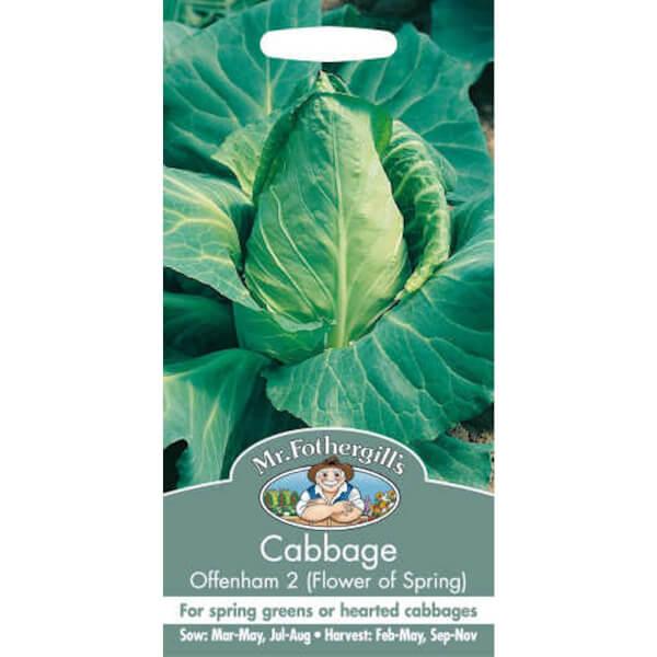 Mr. Fothergill's Cabbage Offenham 2 Flower Of Spring (Brassica Oleracea Capitata) Seeds