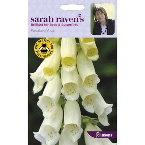 Sarah Ravens Foxglove Alba Seeds