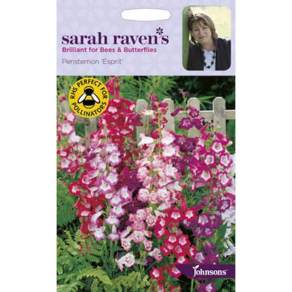 Sarah Ravens Penstemon Esprit Seeds