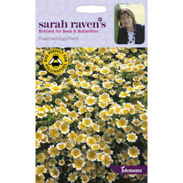 Sarah Ravens Poached Egg Plant Seeds