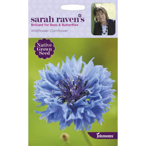 Sarah Ravens Wildflower Cornflower Seeds