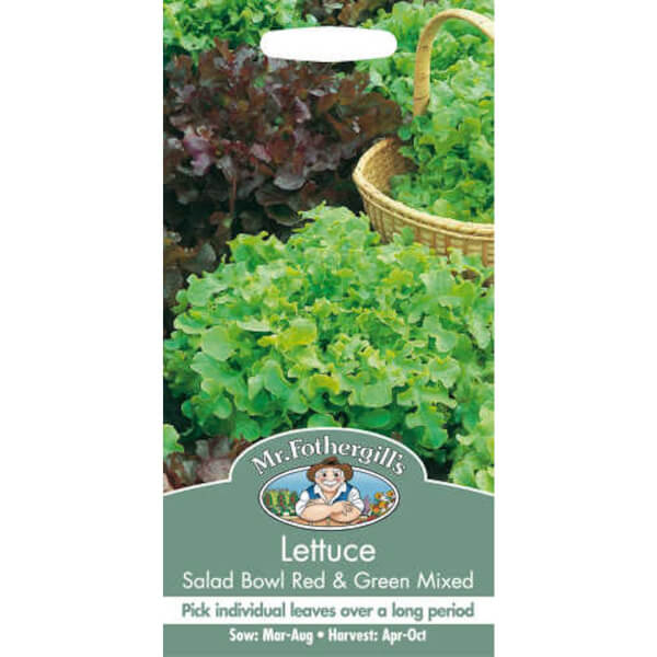Lettuce Salad Bowl Seeds - Red And Green