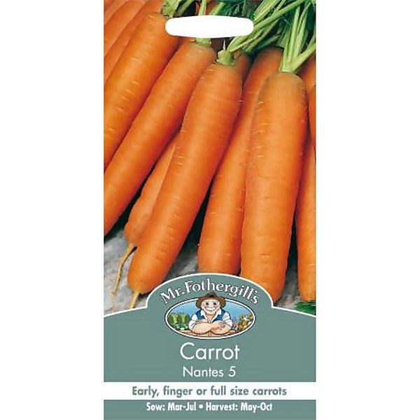 Carrot Early Nantes 5 (Daucus Carota) Seeds