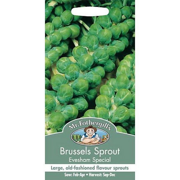 Brussels Sprout Evesham Special (Brassica Oleracea Gemmifera) Vegetable Seeds