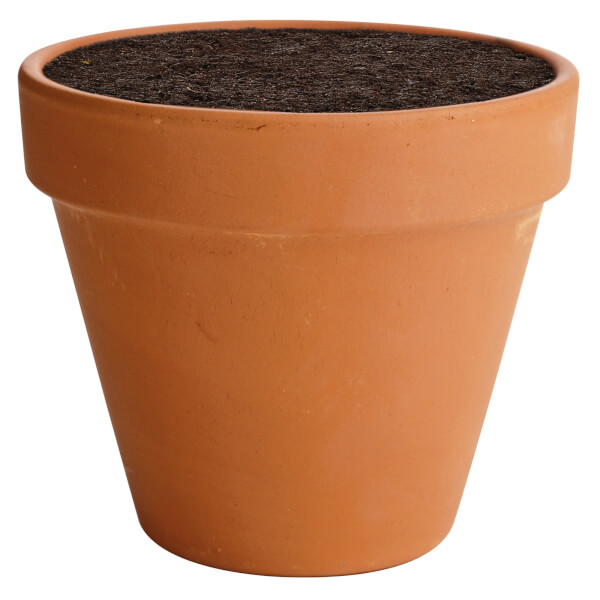 Terracotta Plant Pot - 15cm
