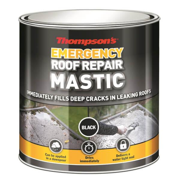 Thompsons Emergency Roof Repair Mastic