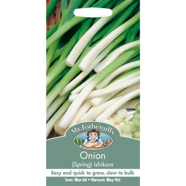 Mr. Fothergill's Spring Onion Ishikura (Allium Fistulosum) Bulbs