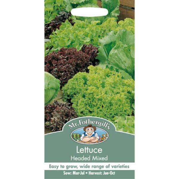 Mr. Fothergill's Lettuce Headed Mixed (Lactuca Sativa) Seeds