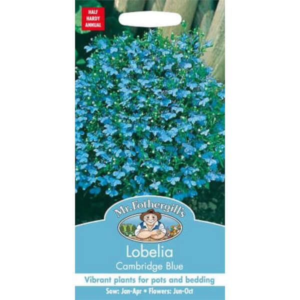 Mr. Fothergill's Lobelia Cambridge Blue Seeds