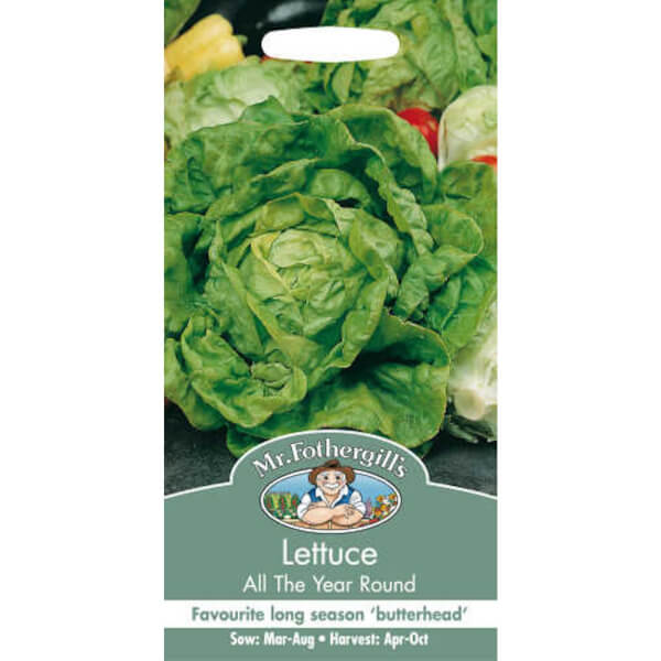 Mr. Fothergill's Lettuce All The Year Round (Lactuca Sativa) Seeds