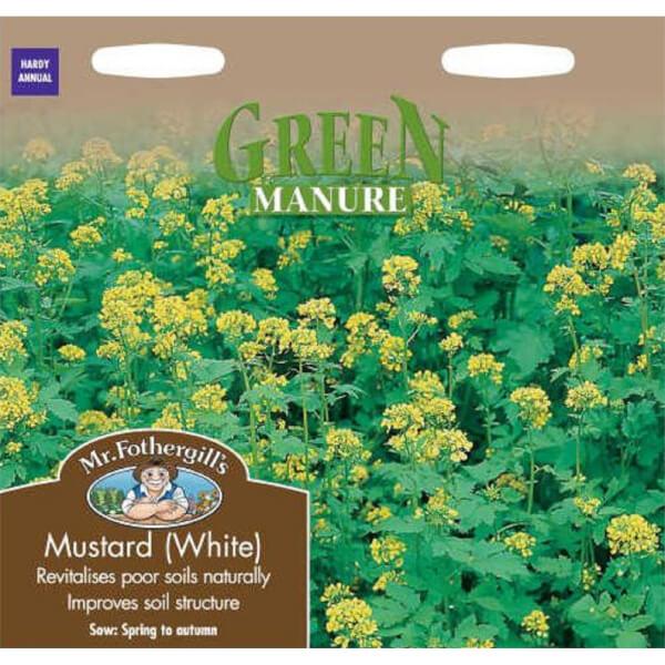 Mr. Fothergill's White Mustard Green Manure (Sinapis Alba) Seeds