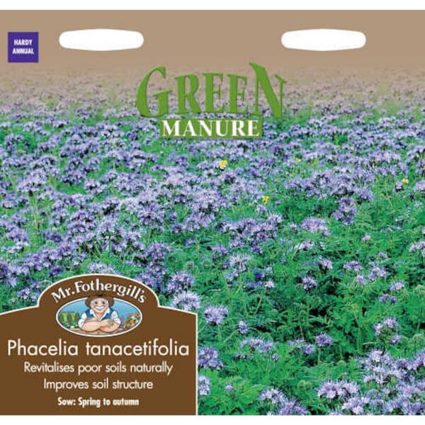 Mr. Fothergill's Phacelia Tanacetifolia Green Manure Seeds