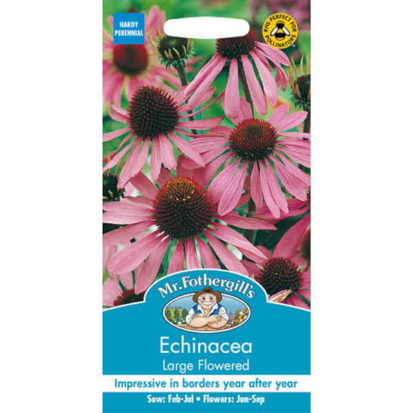 Echinacea Large Flowered Seed