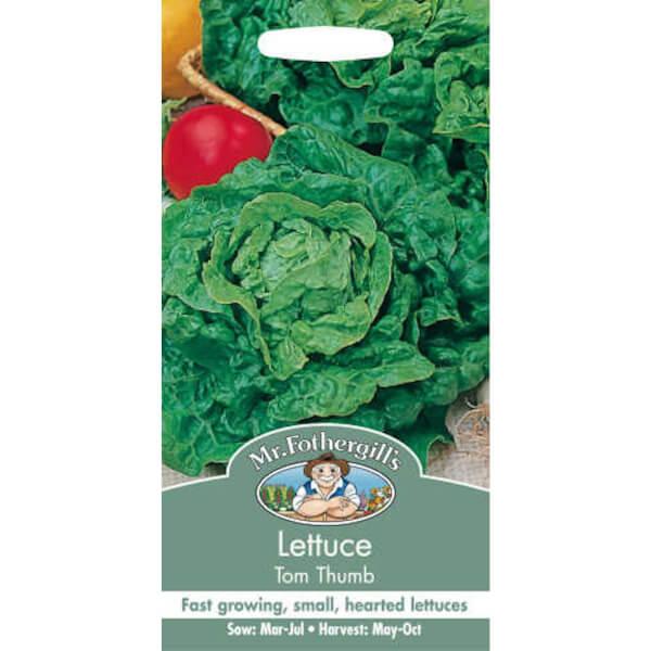 Mr. Fothergill's Lettuce Tom Thumb (Lactuca Sativa) Seeds