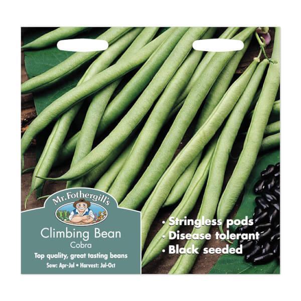 Mr. Fothergill's Climbing Bean Cobra Seeds