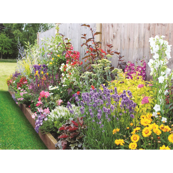 Bee and Butterfly Border Collection - 4m x 60cm