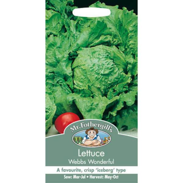 Lettuce Webbs Wonderful (Lactuca Sativa) Seeds