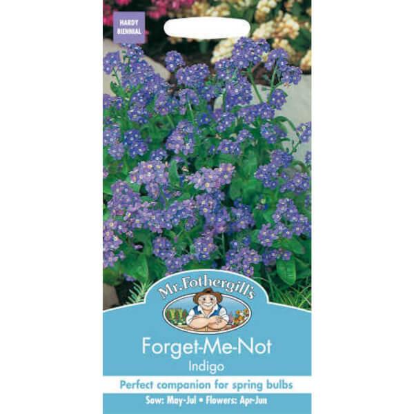 Forget Me Not Indigo (Myosotis Sylvatica) Seeds