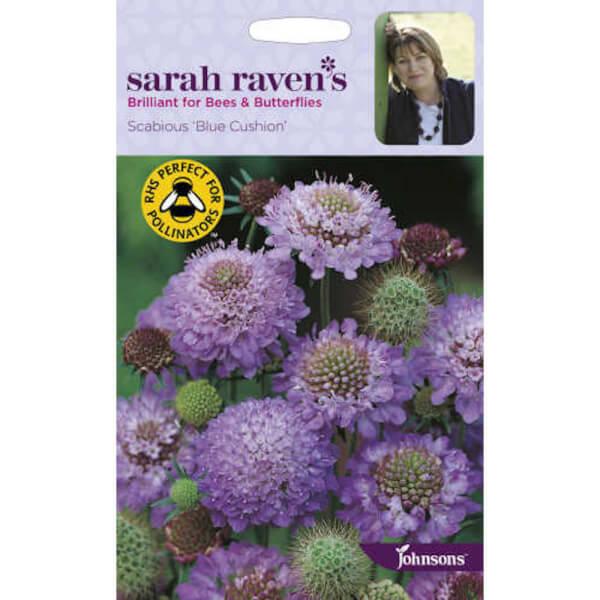 Sarah Ravens Scabious Blue Cushion Seeds