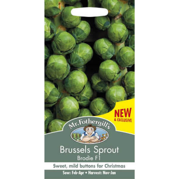 Mr. Fothergill's Brussels Sprout Brodie F1 Seeds