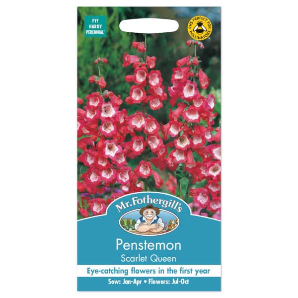 Mr. Fothergill's Penstemon Scarlet Queen Seeds
