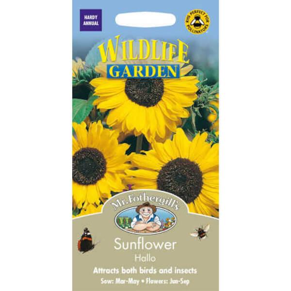 Mr. Fothergill's Sunflower Hallo Seeds