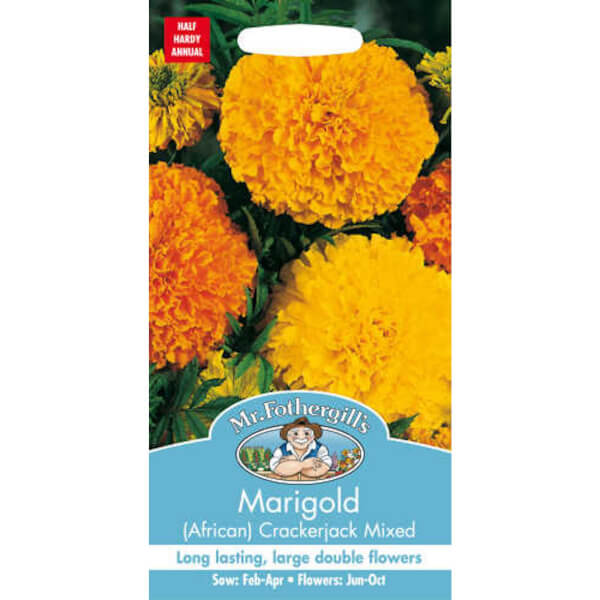 Mr. Fothergill's Marigold African Crackerjack Mixed (Tagetes Erecta) Seeds