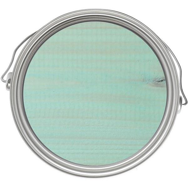 Rust-Oleum Colour Wash Paint - Mint Sorbet - 750ml