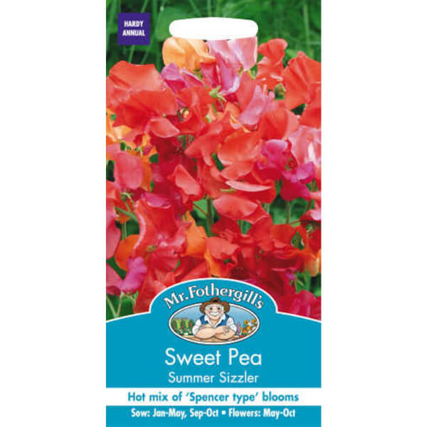 Sweet Pea Summer Sizzler Seeds
