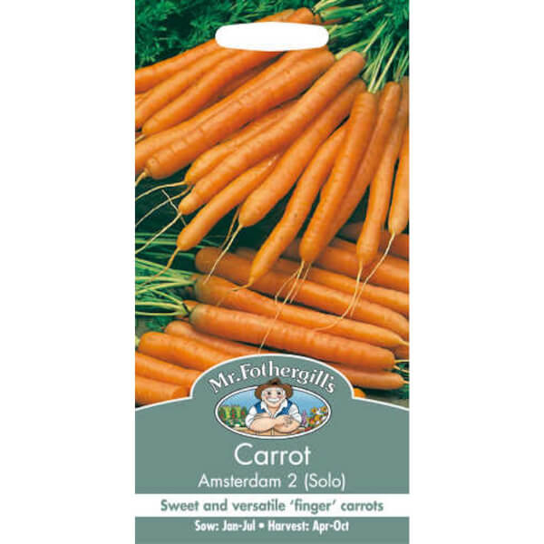Carrot Amsterdam 2 Solo Seeds