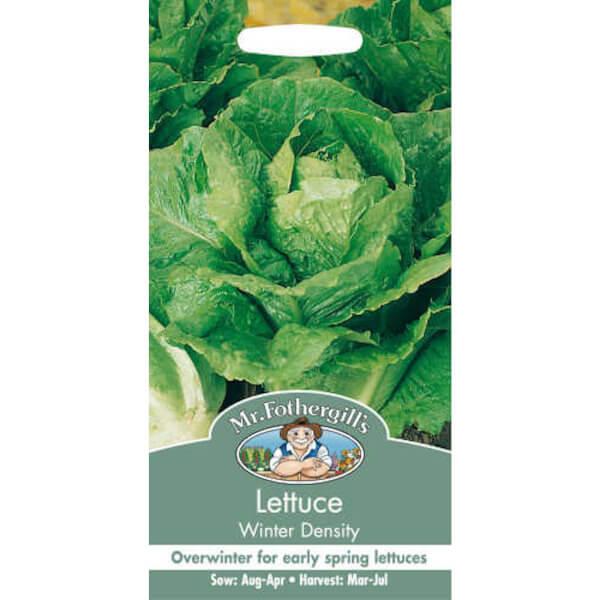 Mr. Fothergill's Lettuce Winter Density Seeds