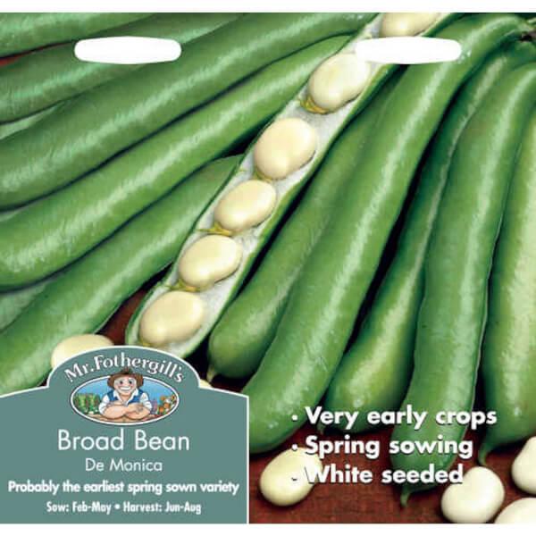 Broad Bean De Monica Vegetable Seeds