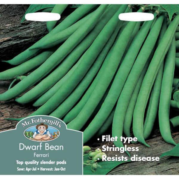 Mr. Fothergill's Dwarf Bean Ferrari Vegetable Seeds