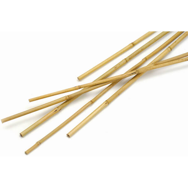 Bamboo Canes - 2.1m