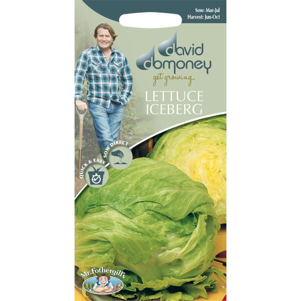 DD Lettuce Iceberg Seeds