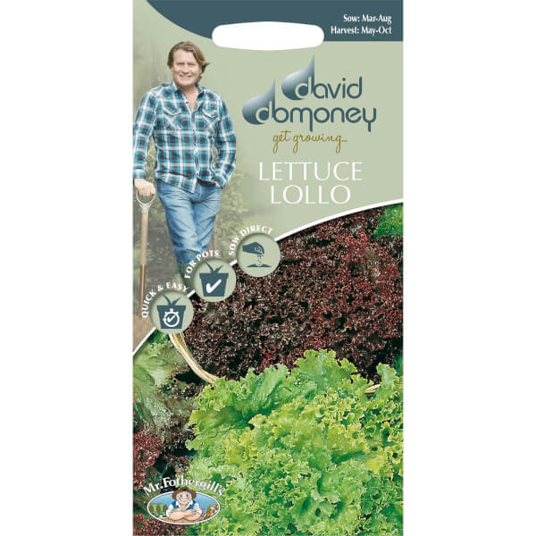 David Domoney Lettuce Lollo  Seeds