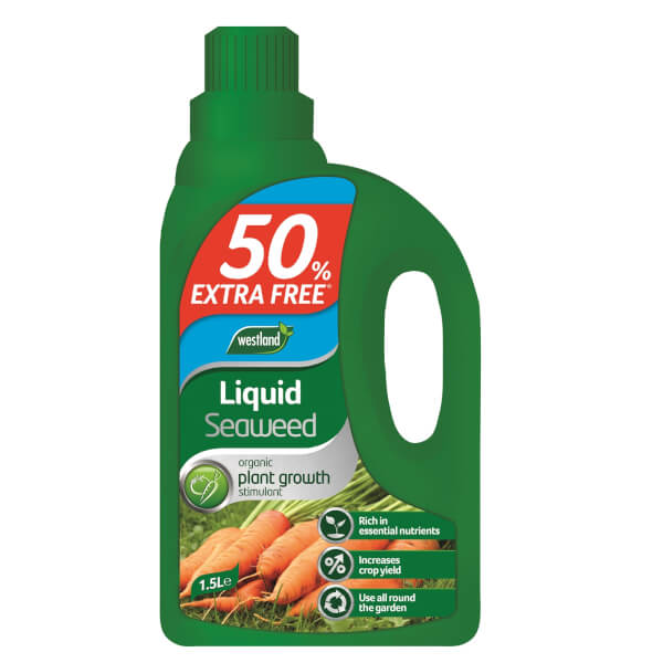 Westland Liquid Seaweed 1L + 50% Extra Free