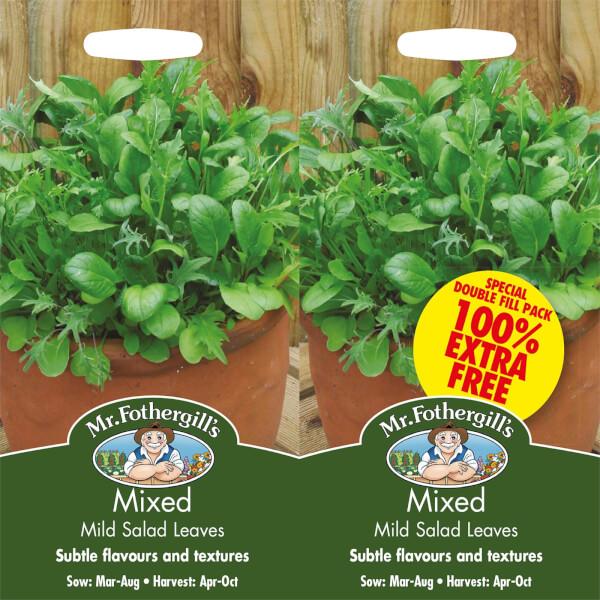 Mr. Fothergill's Mixed Mild Salad Leaves