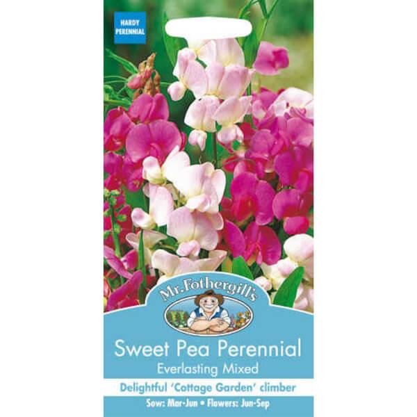 Sweet Pea Perennial Everlasting Mixed (Lathyrus Latifolius) Seeds