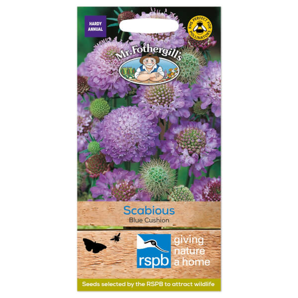 Mr. Fothergill's Scabious Blue Cushion Seeds