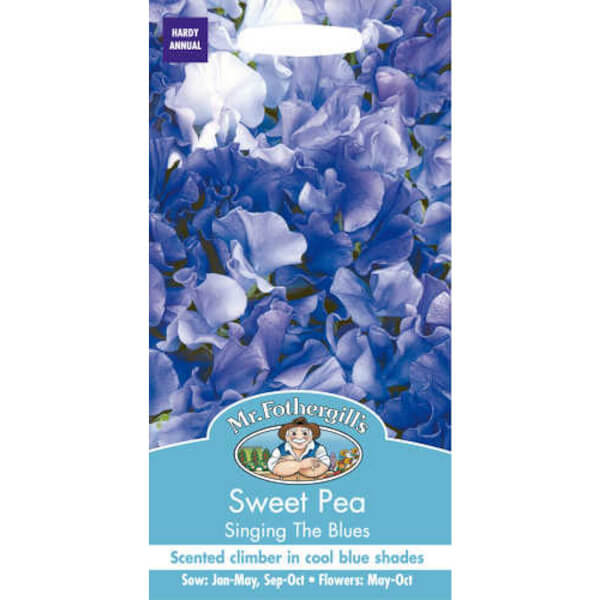 Sweet Pea Singing The Blues (Lathyrus Odoratus) Seeds