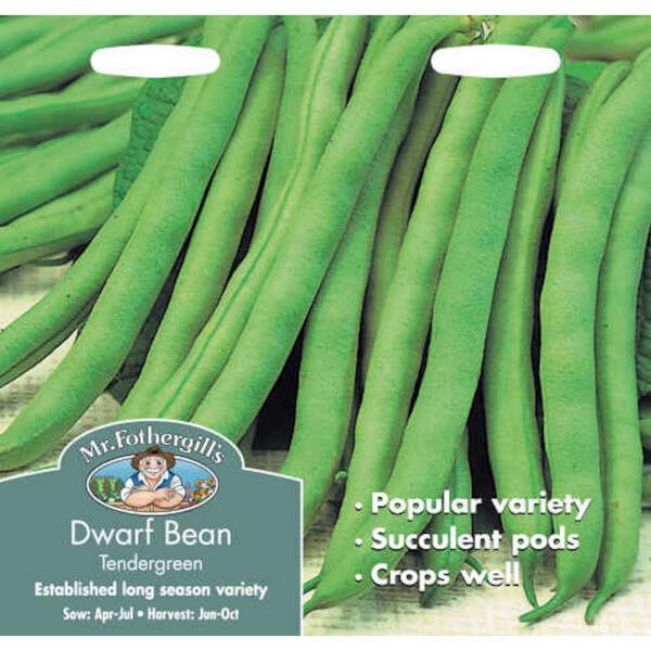 Mr. Fothergill's Dwarf Bean Tendergreen (Phaseolus Vulgaris) Seeds