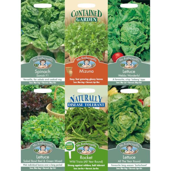 Mr. Fothergill's Lettuce and Leaves Seeds Bundle