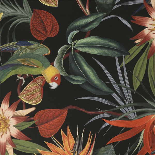 Superfresco Easy Parrot Black Wallpaper