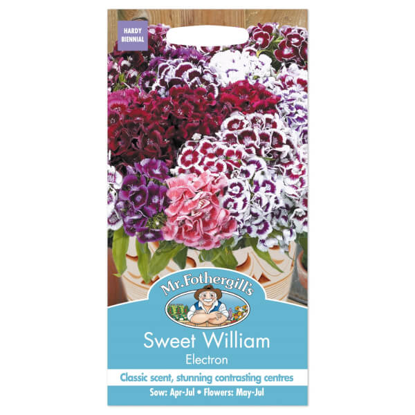 Mr. Fothergill's Sweet William Electron Seeds