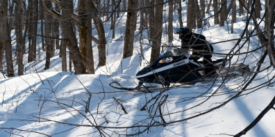 Snowmobile Going Through Trees