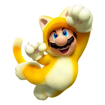 mario in a cat costume